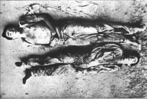 silvio tendler-lamarca e zequinha2