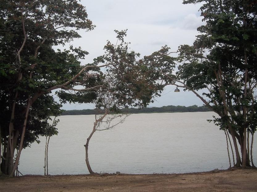 1361541500_473428335_9-Terreno-com-1000-m2-a-margem-do-Rio-Sao-Francisco-Chacara-Mae-Rainha--1